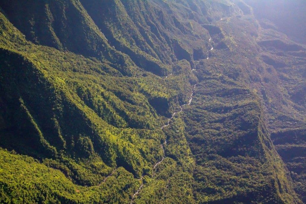 Pu'u Kukui Watershed Preserve