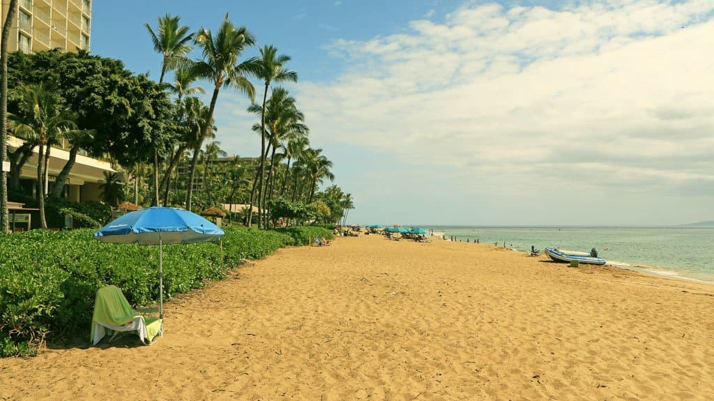 Beaches Maui Kaanapali Beach 186