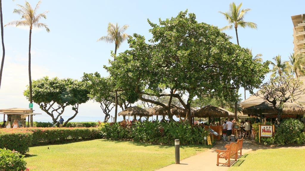Beaches Maui Kaanapali Hula Grill 183
