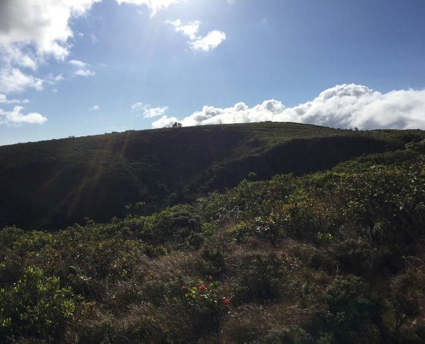 Maui Cultural Lands
