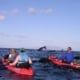 Whale Watching Kayak Maui