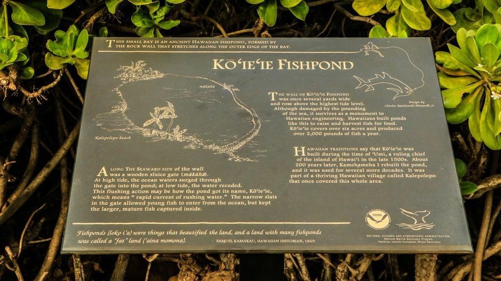 Maui Fish Ponds Info Plaque