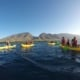 Group Kayaking in Olowalu Maui