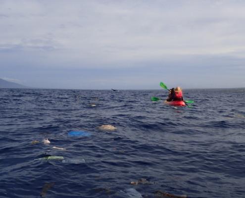 Trash in Ocean