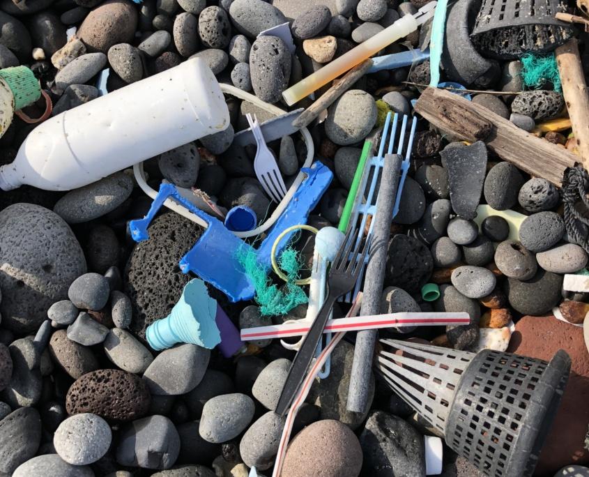 Plastic marine debris Maui
