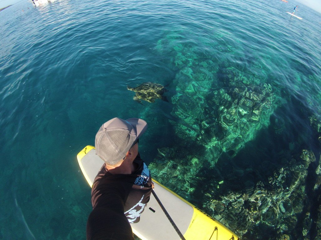 84952e0fa ... Lesson Kapalua Bay SUP with sea turtle