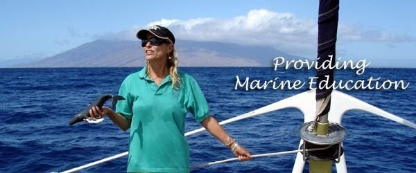 hawaii wildlife fund marine naturalist