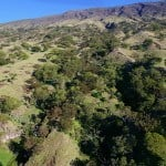 Leeward Haleakala Watershed Restoration Partnership