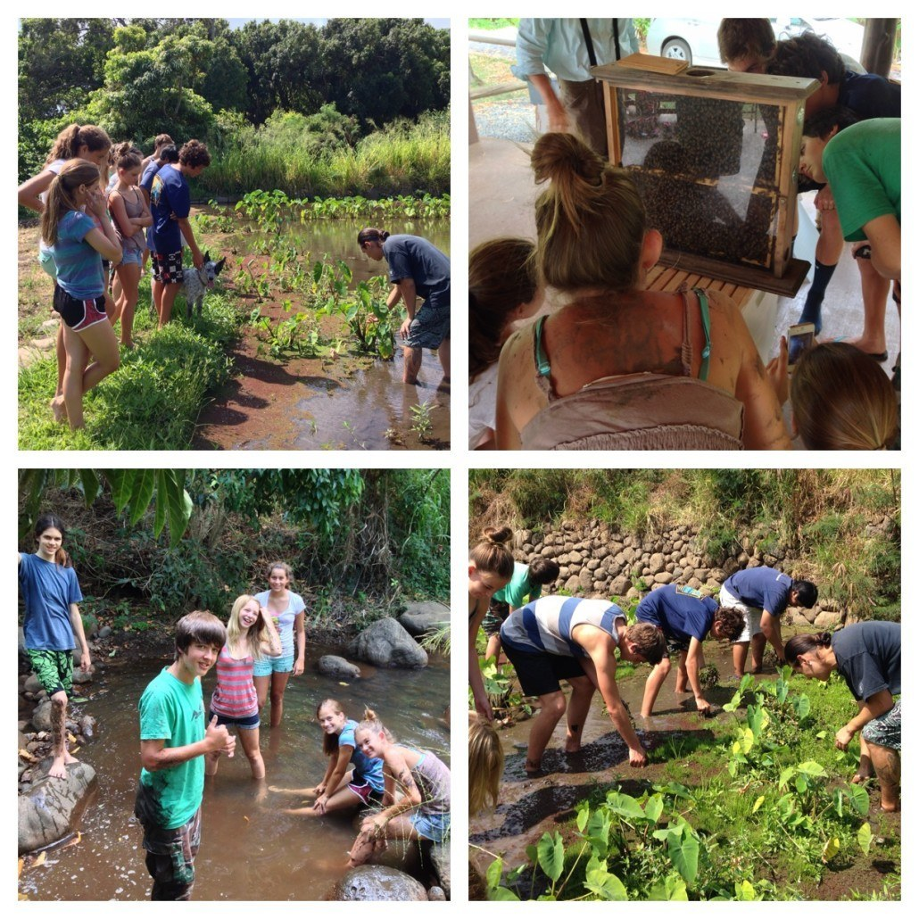 Maui Huliau Foundation environmental youth