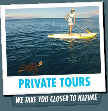 Private SUP Maui Tours