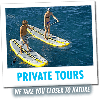 private nature tours