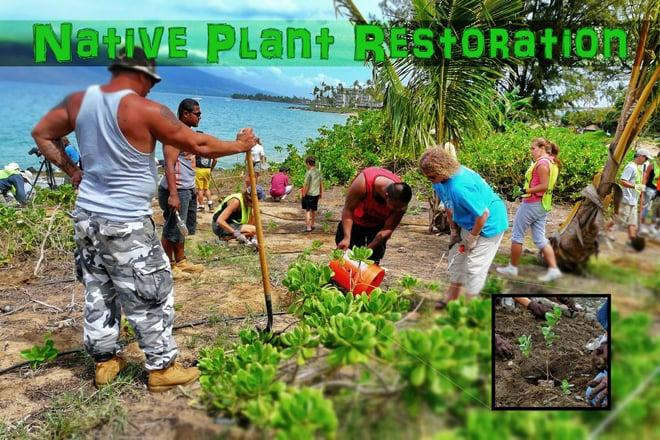 Malama Maui Nui Plant Restoration