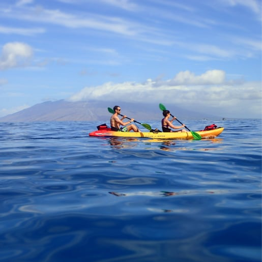 maui kayak tours