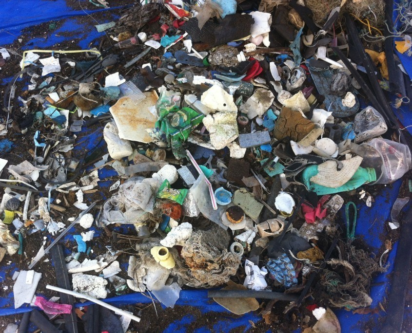 Plastic debris from Sustainable Coastlines Hawaii Kaehu Beach Cleanup