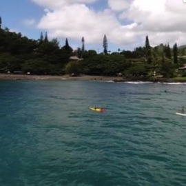 Best SUP Tours in Maui
