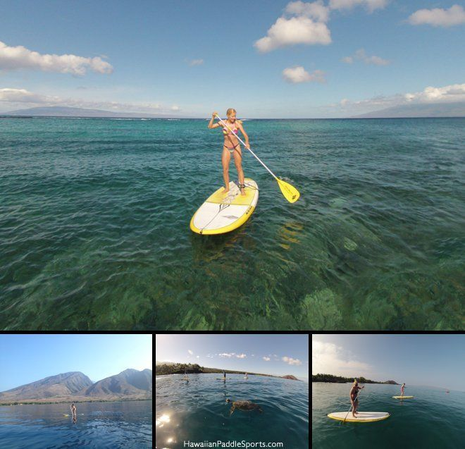 Stand Up Paddle Maui