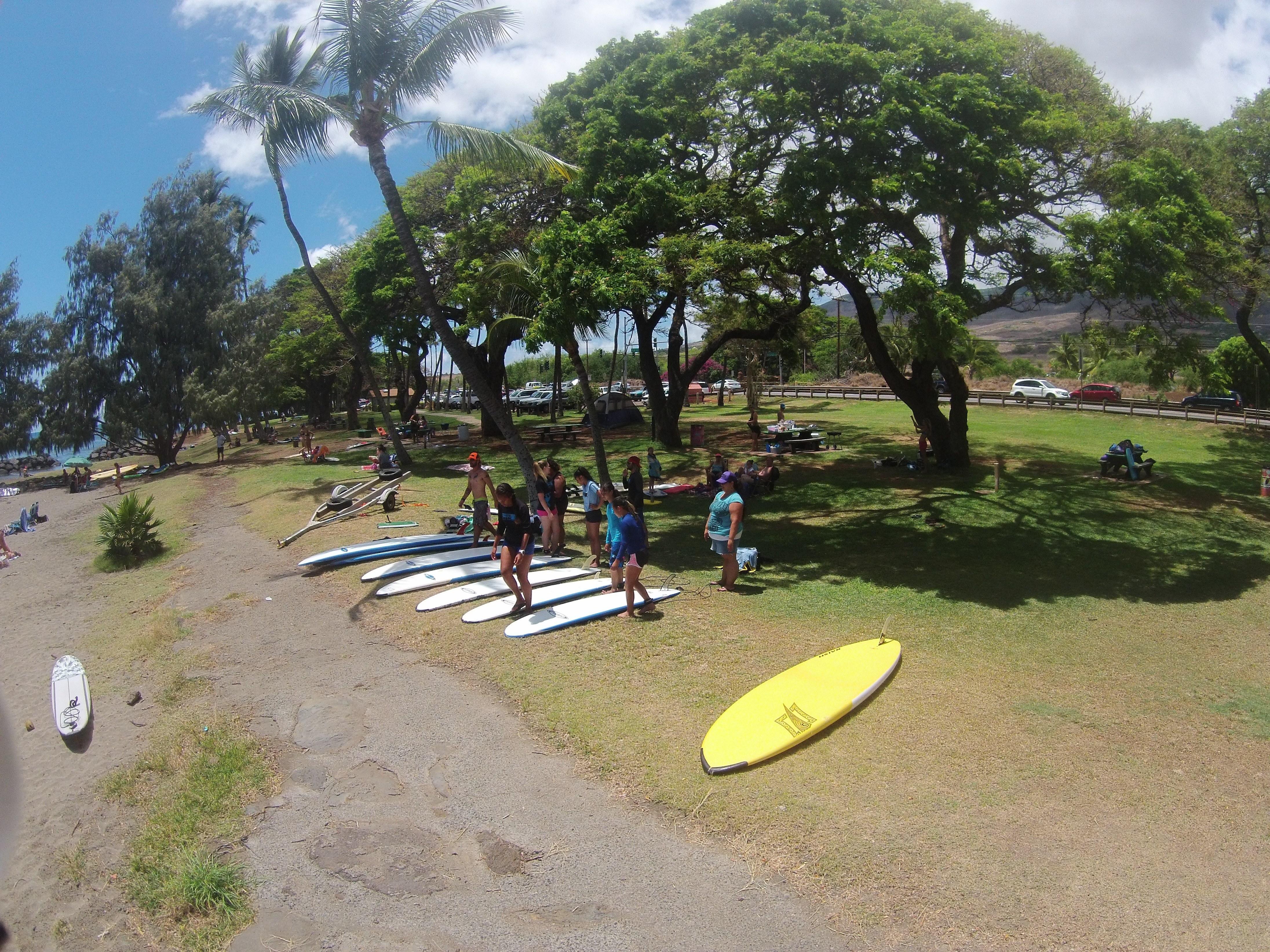 myfs surf instruction