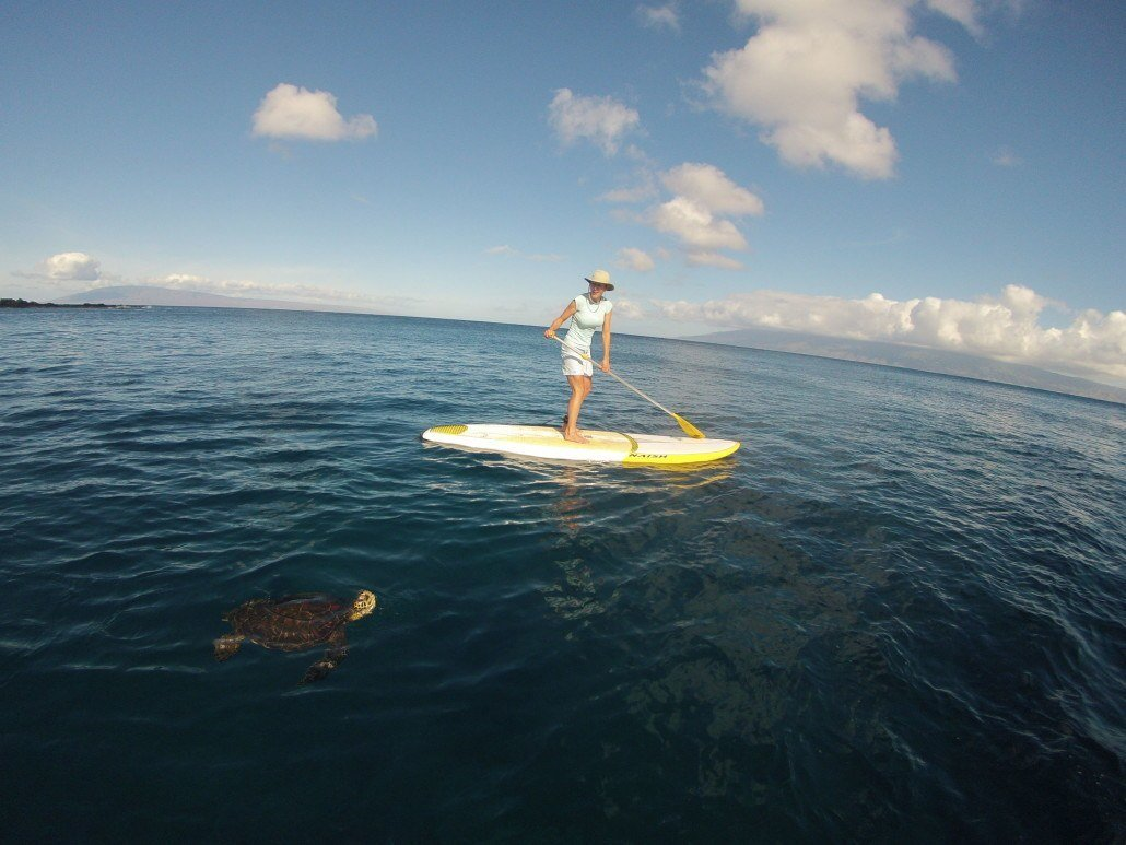 943cb9eed SUP Lesson Kapalua Bay Kapalua Paddle Lesson Kapalua Bay Beach Paddling  with Turtles in Kapalua Bay ...
